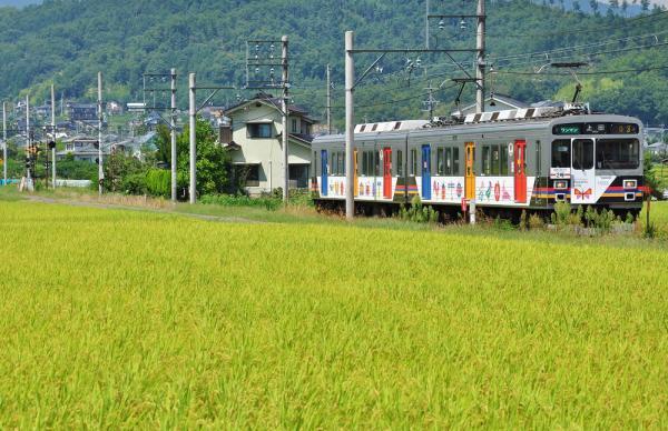 2012年8月30日 上田電鉄別所線 舞田~中野 1000系1003F