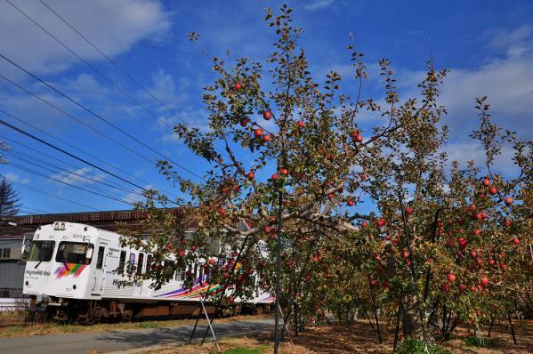 2012年11月24日 アルピコ交通上高地線 森口~下島 3000系3003-3004