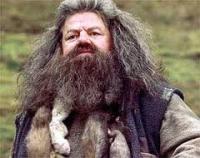 ルビウス・ハグリッドRubeus Hagrid