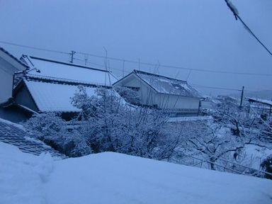 2014yukinoasa2.jpg