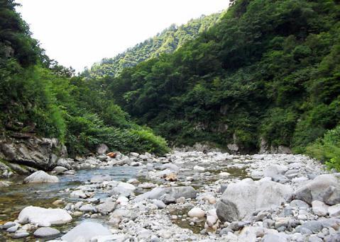 鱒止めの滝の上流