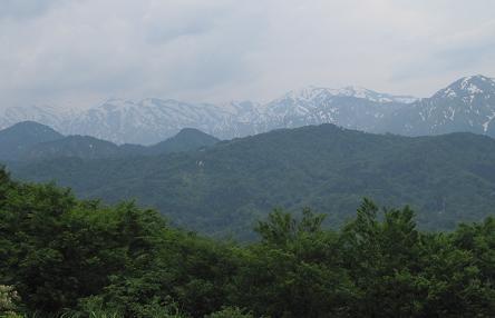 201206031.jpg