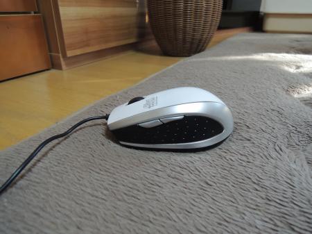 DSCN1488_convert_20121101181642.jpg