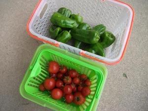 141020トマトとピーマン