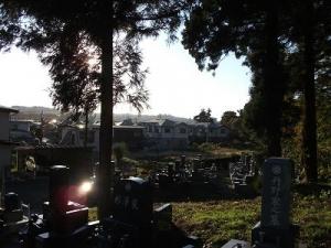 141030向こうのお墓の辺り