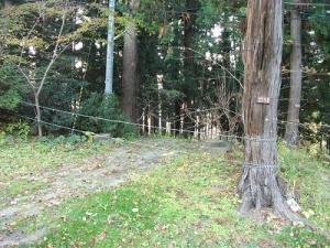 141030男坂ロープ