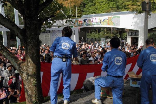 TobeZOO とべ動物園の日餅撒き 141026 03