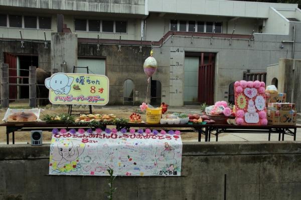 TobeZOO 媛8歳誕生会 01