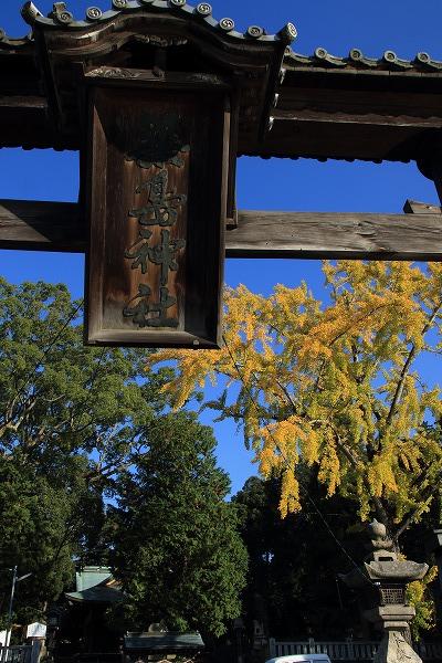 築島神社銀杏紅葉 141115 01