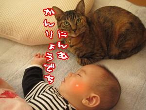 IMG_1753.jpg