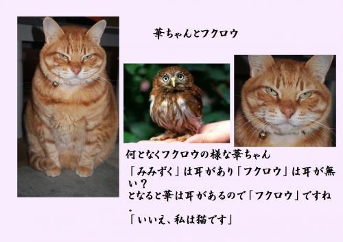 繝輔け繝ュ繧ヲ_convert_20140204220211