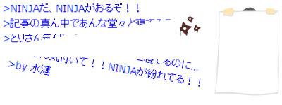 ninjadokoja.jpg