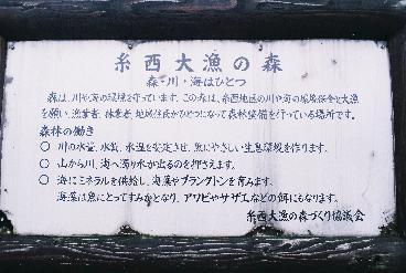 糸西大漁の森