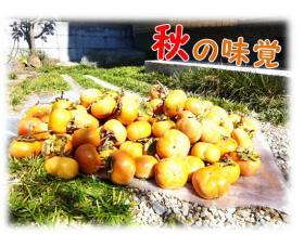 遘九・蜻ウ隕喟convert_20121024190101