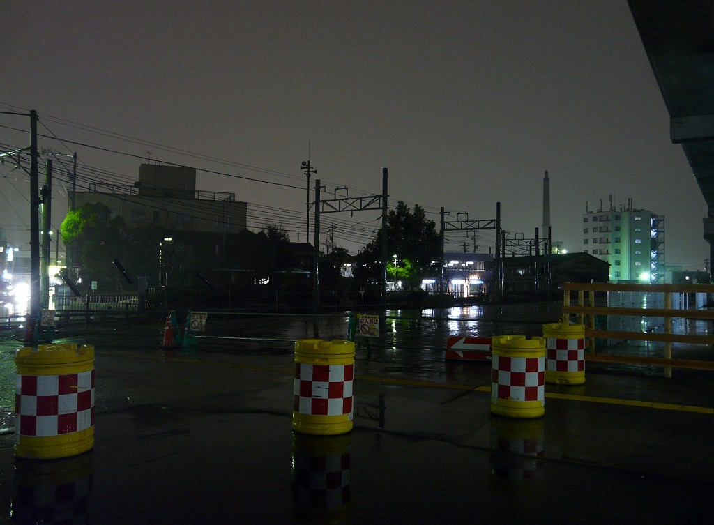 20130301nishikana3.jpg