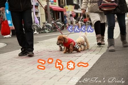002IMG_3118.jpg