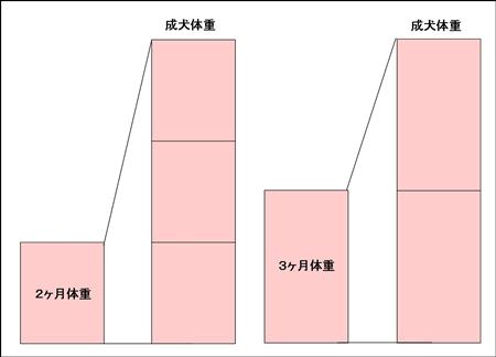 002raijyuyosoku.jpg