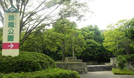 003nishikori.jpg