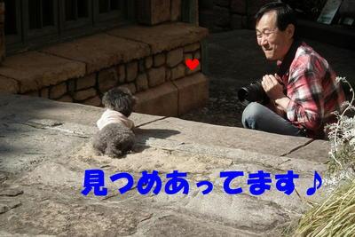 003oyakata.jpg