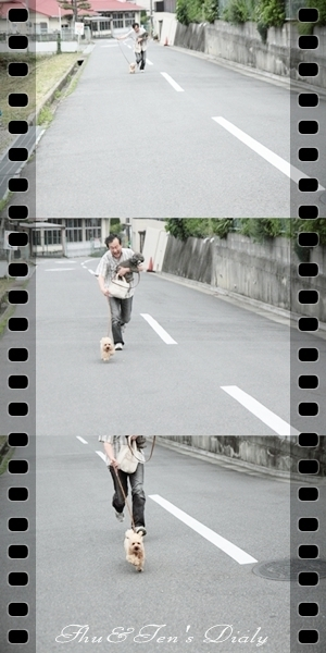 004ten-hi_20120918003509.jpg