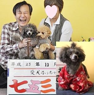005shichigosan.jpg