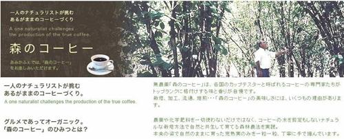 009amicafe.jpg
