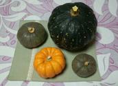 今日のかぼちゃ