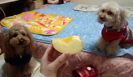 夜のおやつ リンゴ