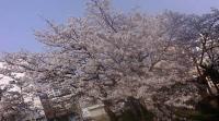 2012-04-26 001 2012-04-25 001