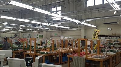 道の駅五霞の植物売り場