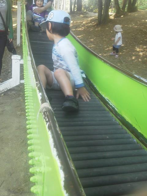 浦山公園 005