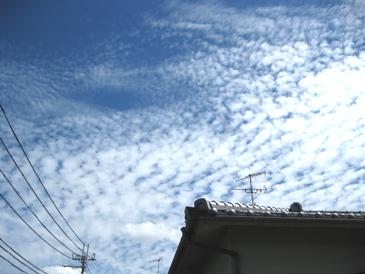 20120828雲模様1
