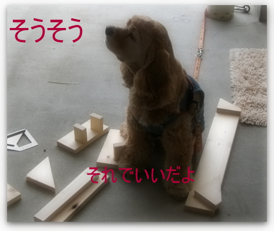 小太郎大工2