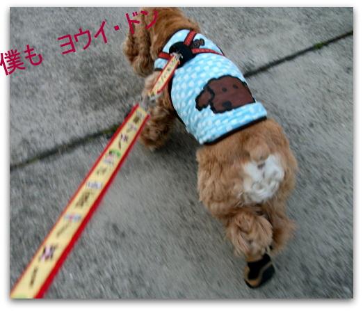 小太郎も運動会