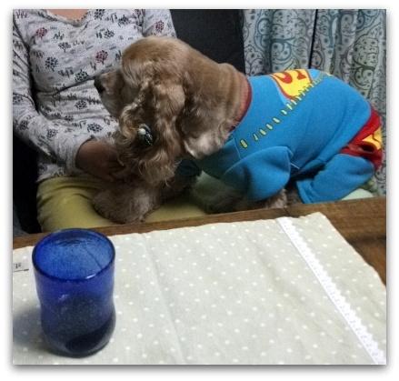 スーパーマン 044