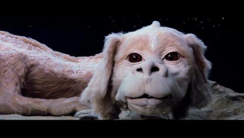 The-NeverEnding-Story-the-neverending-story-6204785-852-480.jpg