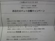 ポケさんの食いしん坊日記-100605_195840_ed.jpg