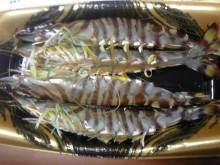 ポケさんの食いしん坊日記-110115_175928_ed.jpg
