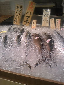 ポケさんの食いしん坊日記-110509_140951.jpg