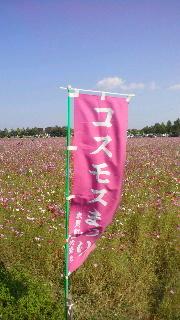 ポケさんの食いしん坊日記-2012102114030000.jpg
