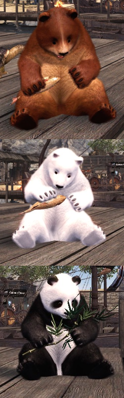 vindictus_bearandpanda.png