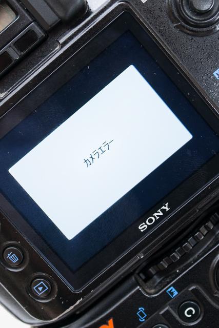20121004-_DSC1729 (1)