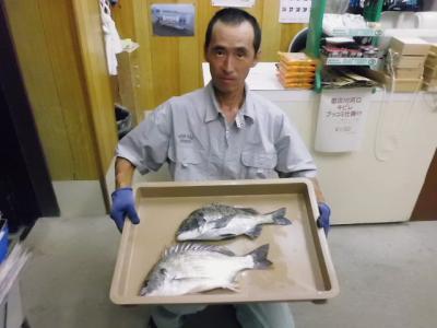 20120802fujisawa.jpg