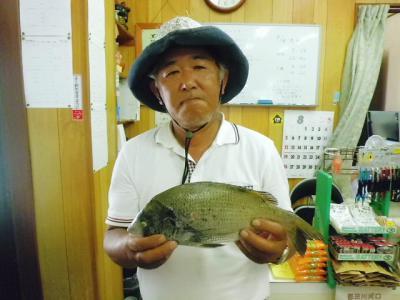 20120804koyama.jpg