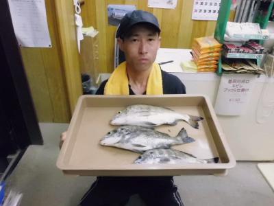 20120824kouchi.jpg