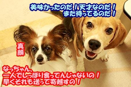 10_20120905200934.jpg
