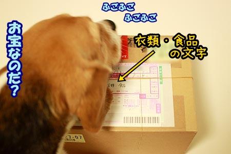 1_20120905200957.jpg