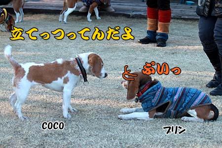 独り相撲2