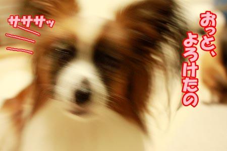 2_20120813230647.jpg