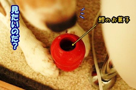 2_20120814210136.jpg